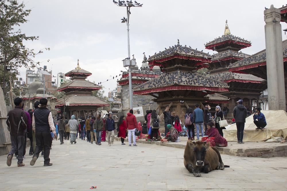 plaza durbar kathmandu