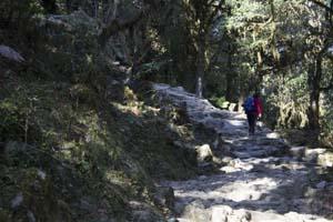 Trekking Campo Base Annapurna: Camino