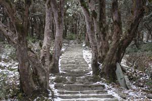 Campo Base Annapurna trekking nepal