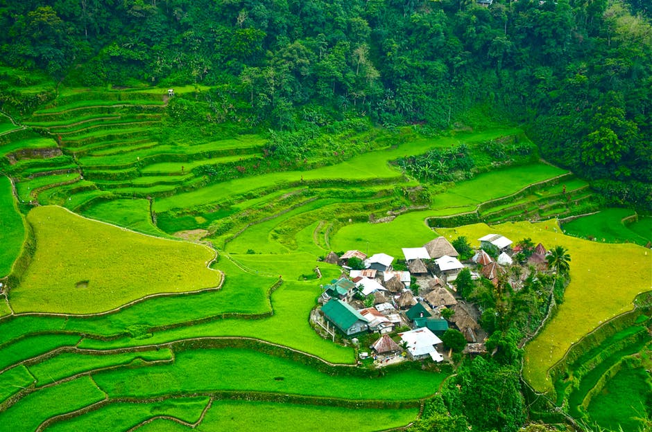 banaue terrazas de arroz