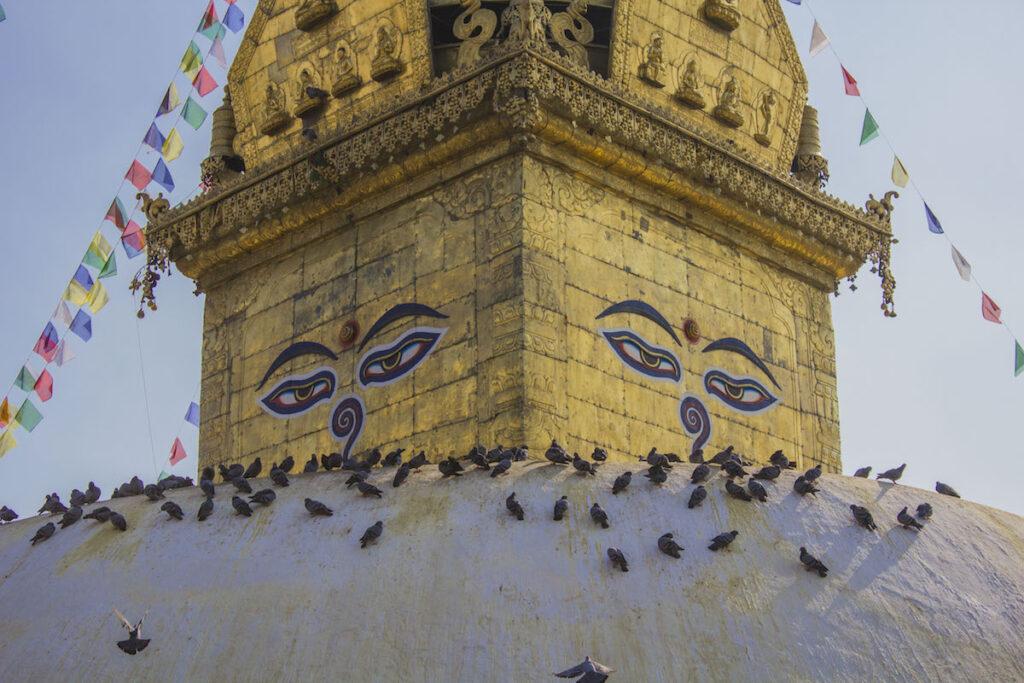 pagoda dorada templo