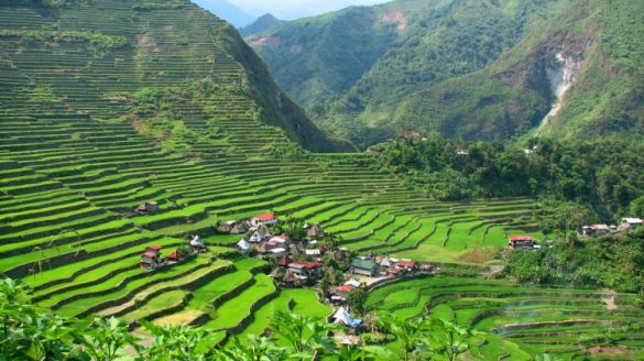 terrazas de arroz filipinas