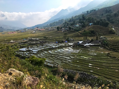 arrozales en sapa vietnam