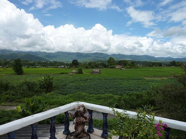 campos de arroz en pai
