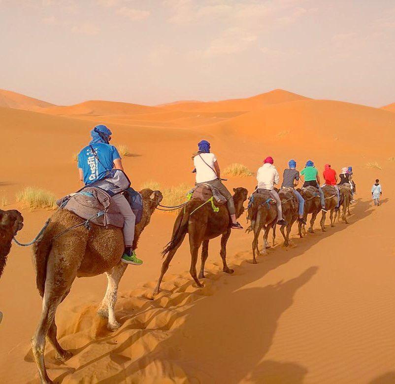 excursión al desierto de Merzouga dromedario