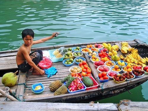 pescador en halong bay
